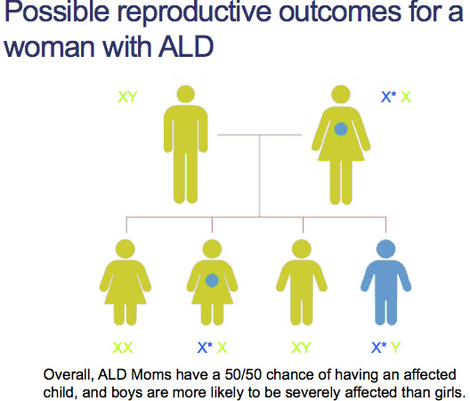 possible_reproductiive-outcomes_for_a_woman_with_ALD